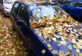 Die Versicherung wechseln und das Auto winterfest machen