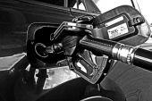 Dieselfahrzeug versichern: keine Zusatzfragen im Antrag